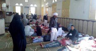 מצרים מלקקת את פצעיה