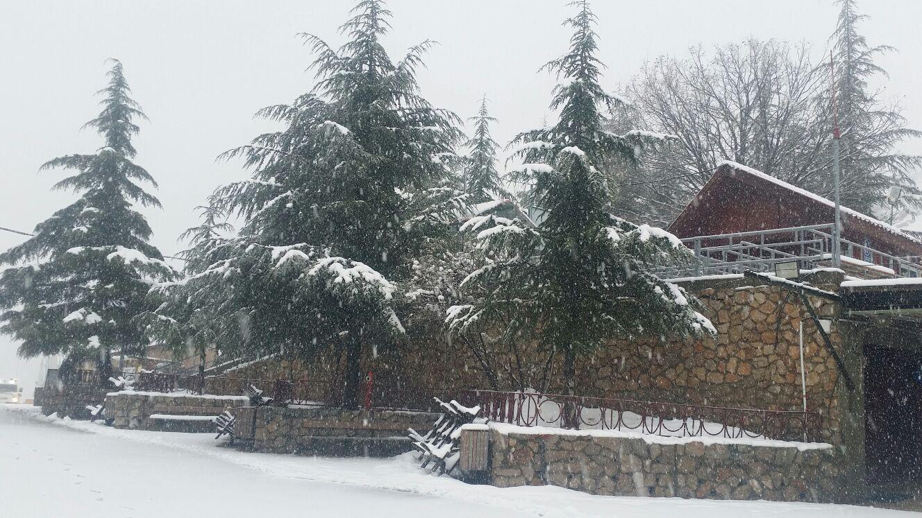 שלג בחרמון. צילום: דוברות האתר