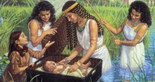 משה בתיבה